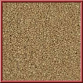 Carousel Bedroom Carpet Corn Beige
