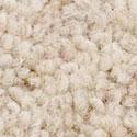 Cormar Carpet New Oaklands 32oz Carpet Angora