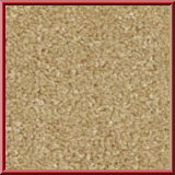 Dublin Twist Lounge Carpet Beige