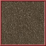 Revolution Lounge Carpet Beaver