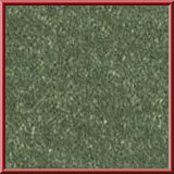 Revolution Lounge Carpet Mint