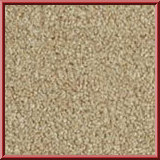Revolution Lounge Carpet Warm Beige