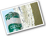 Cloud 9 Carpet Underlay at Abbey Carpets