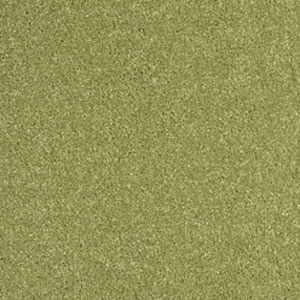Bedroom Carpets Carousel Carpet Lime Green 41 Buy