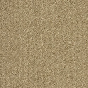 With all kinds of carpet styles and colours to choose from when carpeting your house, at Big Warehouse Sale you'll find the perfect carpet online at a discounted price. Carpets are a staple feature of many homes that can often be overlooked.