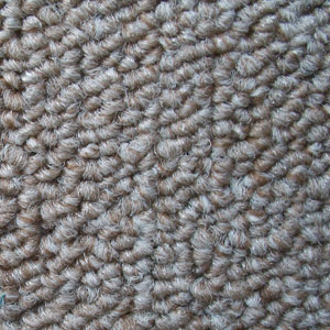 Beige Carpets At Cheap Prices